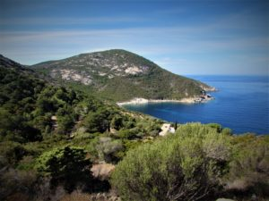 Corsica northern coast Calvi forest and sea