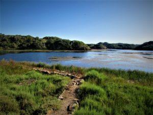 Menorca walking path nature park des Grau